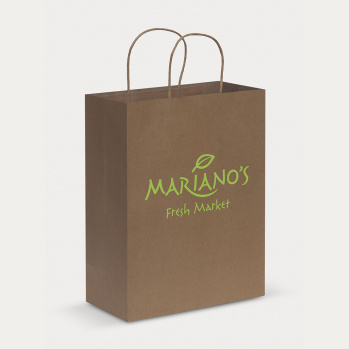 Paper Carry Bag (Large)